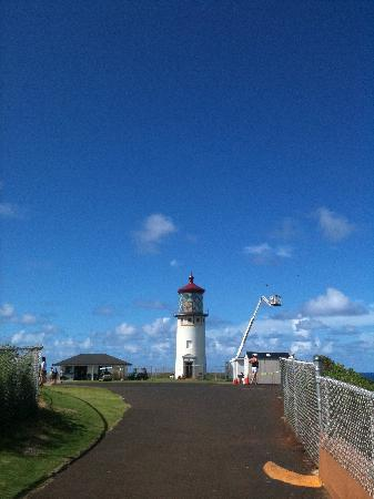 Kilauea Lighthouse: キラウエア灯台