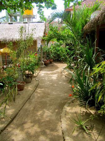 Rumah Kundun: Garden again