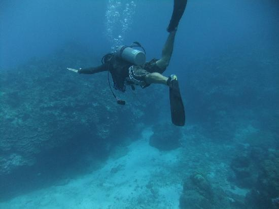 Sea Force Saipan - Day Tours: オーナー坂ちゃん