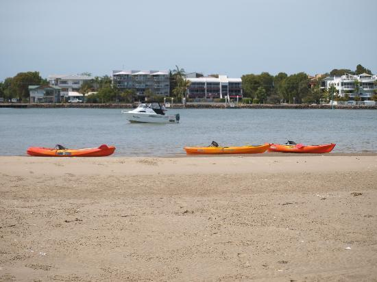 Kayaking @ Noosaville