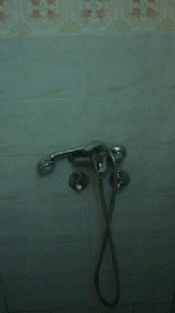Royal Hotel: shower