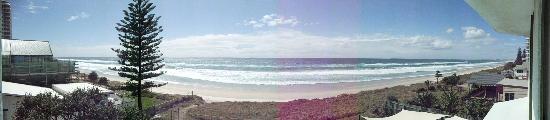 Hibiscus on the Beach: 180 deg views