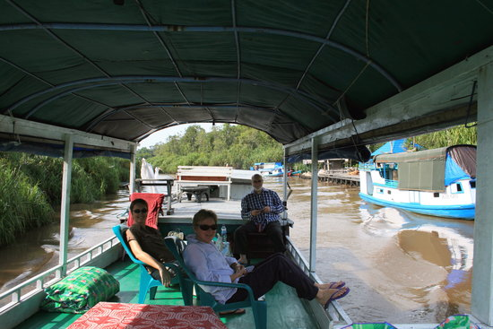 Rimba Orangutan Eco Lodge: Cruising the river onboard our klotok