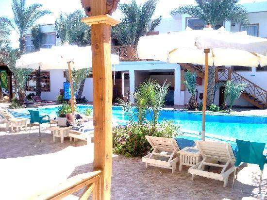 아카시아 호텔 다합 사진
