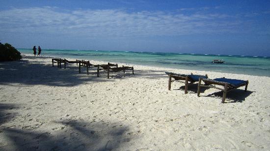 Pongwe Beach Hotel: loads of beach beds