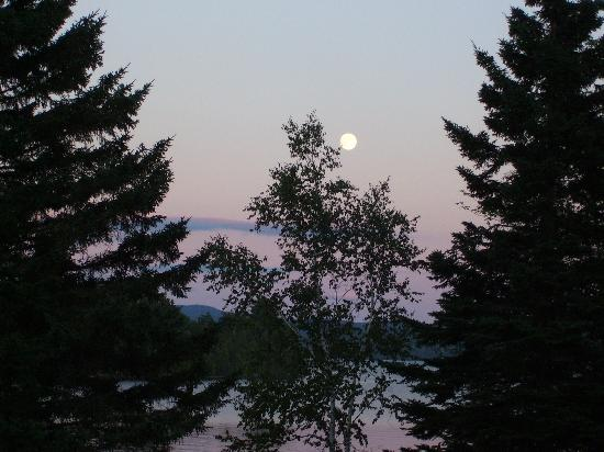 Hunter Cove Cabins on Rangeley Lake: Full Moon through the tree tops