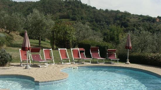 Villa di Papiano : basen