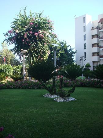 Club Med Palmiye : jardin hôtel