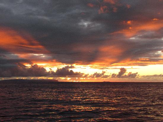 Kauai Sea Tours: Sunset!