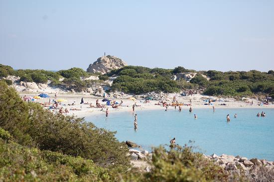 Hotel Oleandro : La spiaggia