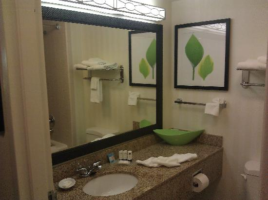 Fairfield Inn & Suites Anniston Oxford: Vanity