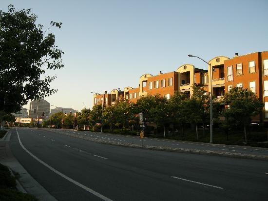 Hilton Garden Inn San Mateo: 早朝のホテルの前の風景