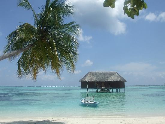 มีรูไอซ์แลนด์รีสอร์ท&สปา: Honeymoon water bungalo