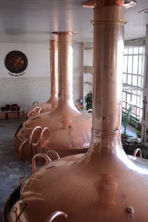 Budweiser Brewery (Budejovicky Budvar): Beer tanks
