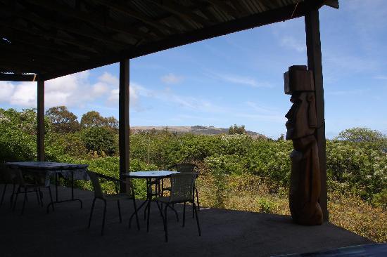 Tekarera Kainga Ora & Kainga Nui: Outside patio