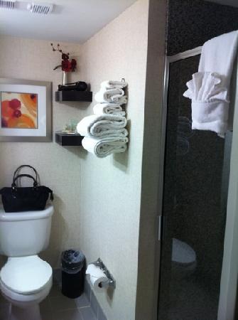 Holiday Inn Aladdin: bathroom