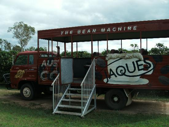 Jaques Coffee Plantation: tour vehicle