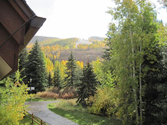 Tivoli Lodge: View from our balcony