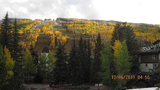 Tivoli Lodge: colors of fall in vail