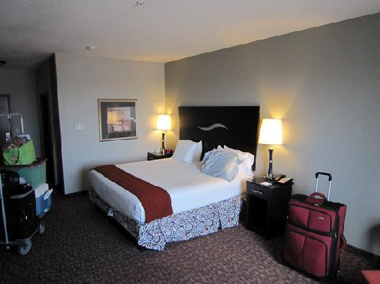 Holiday Inn Express Hotel & Suites Fort Stockton: King size bed