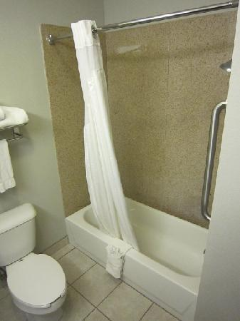 Holiday Inn Express Hotel & Suites Fort Stockton: Toilet and shower
