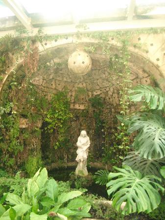 Detalle de las paredes de flores del jard n picture of - Jardin de invierno ...