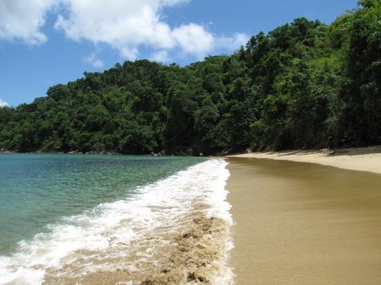 Englishman's Bay: paradise