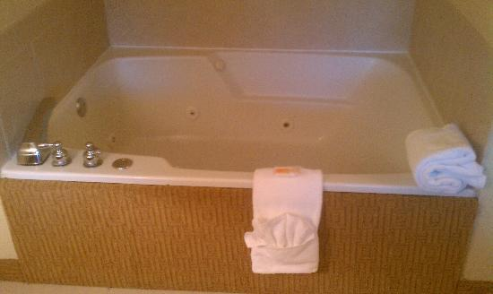 Holiday Inn Flint: Jacuzzi in my room