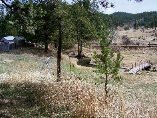 Black Hills Cabins and Motel at Quail's Crossing: This is looking at creek from cabins; playground is on other side of cabins.  This swing is not