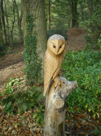 The Longmynd: SCULPUTURE IN GROUNDS
