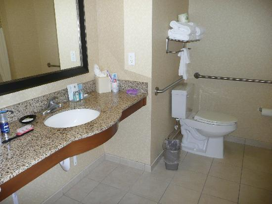 Hampton Inn Santa Barbara/Goleta: Bathroom - had shower over the bath