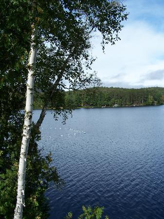 Long Lake, État de New York : A great swimming area - the water here is crystal clear