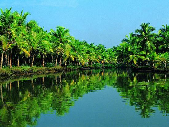Vypin Island, India: backwater