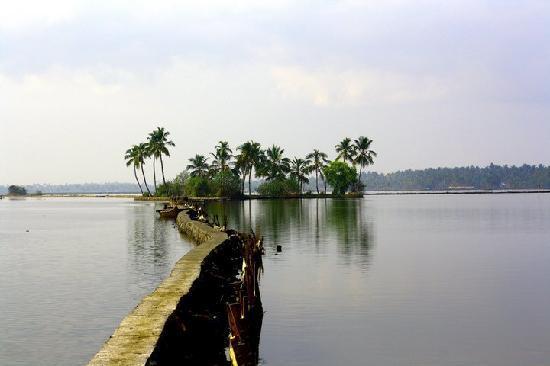 Cherai Beach: backwater