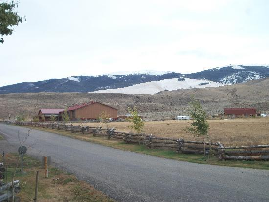 The Longhorn Ranch Lodge & RV Resort: View down the drive