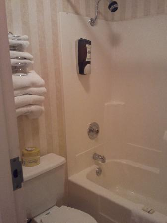 West Bank Inn: small, but everything you need - nice shower!