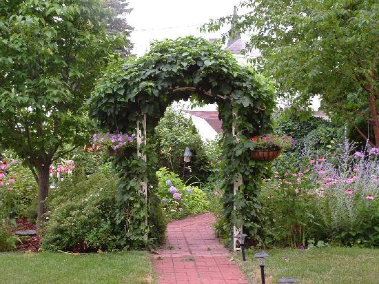 Morning Glory Bed and Breakfast: Hops covered arbor leading to lush gardens