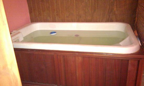 The Nest at Palisades Cabins: Jacuzzi already filled with chlorinator bob