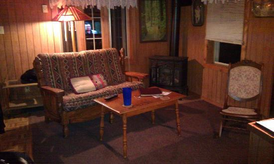 The Nest at Palisades Cabins: living room