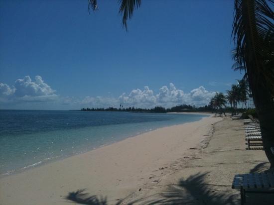 Old Bahama Bay: beach looks nice but is not good for swim tho. el mar es bonito pero no es bueno para nadar