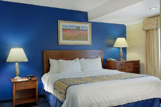Cloverleaf Suites Charlotte: Queen Bed