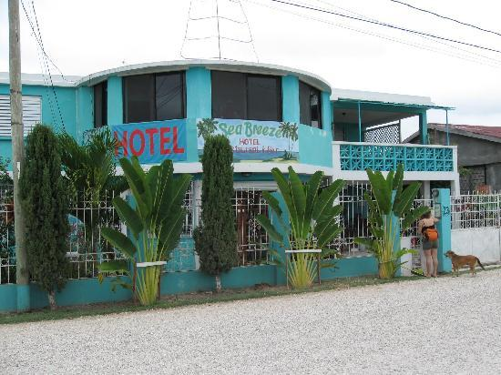The Sea Breeze Hotel: Can't miss the blue hotel!