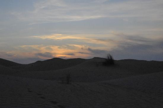 Zaafrane, Tunisia: La soirée commence