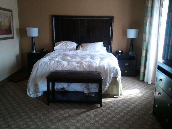 Hampton Inn & Suites McAlester: bed (undone as I was checking out)