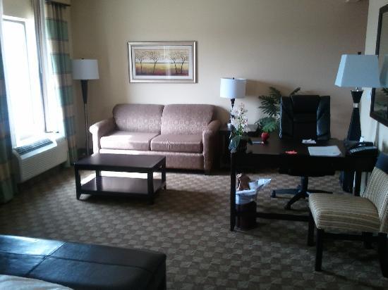 Hampton Inn & Suites McAlester: sitting area