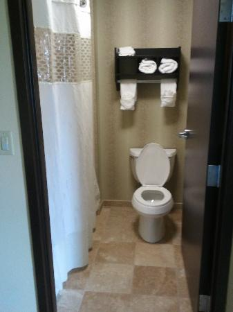 Hampton Inn & Suites McAlester: toilet (has a door for privacy)