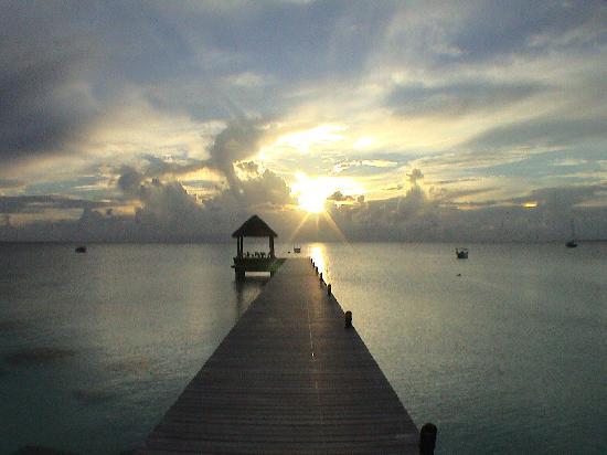 Fakarava, Polinesia francese: Aspettando di cenare...
