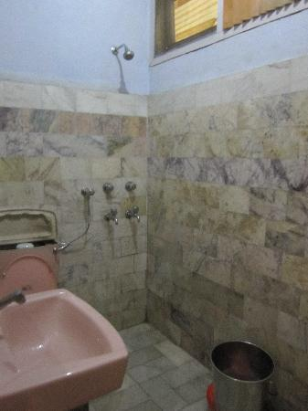 Disgusting bathroom picture of hotel vikrant kullu for Disgusting bathroom pictures