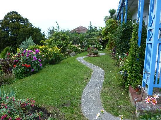 """St Maur : A small section of David's """"tropical"""" garden"""
