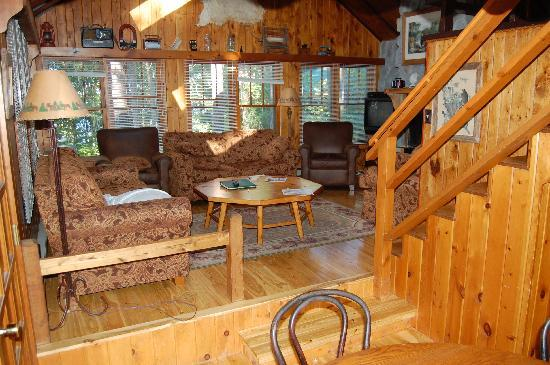 Ludlow's Island Resort: Living room at Coffeetme Cabin